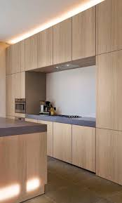 Laminate Cabinets Peeling by Contemporary Kitchen Wood Veneer Stainless Steel Startling