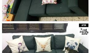 Microfiber Sofas And Cats by Sofa F Beautiful Cat Proof Sofas Microfiber Pet Furniture Sofa