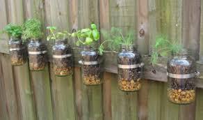 diy faire pousser des plantes aromatiques en intérieur le