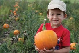 Pumpkin Farms In Channahon Illinois by 2017 Area Pumpkin Farms U0026 Corn Mazes West Suburban Living