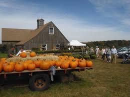 Pumpkin Picking Ct Best by Averill Farm Pyo Pumpkin Patch Connecticut Haunted Houses
