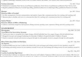 Professional Resume Templates 2015