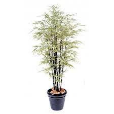 entretien des bambous en pot bambou artificiel vert espace