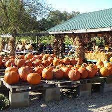 Apple And Pumpkin Picking Maryland by Queen Anne Farm 38 Photos U0026 12 Reviews Local Flavor 18102
