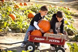 Pumpkin Patch Parker County Texas by Travelok Com Oklahoma U0027s Official Travel U0026 Tourism Site
