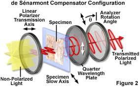 Polarized Light Microscopy The de Sénarmont pensator