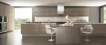 cuisine bois laqué cuisines modernes design laquées avec ou sans poignées pau 64