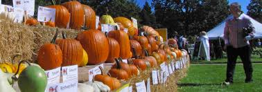 Pumpkin Farms In Flint Michigan by Things To Do September 18 24 Flint And Genesee Chamber Of Commerce