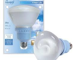 fluorescent lights ergonomic fluorescent spot light bulbs 45