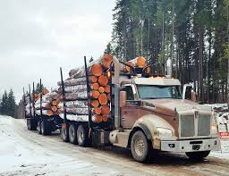 100 Log Trucks Hauling Logs In British Columbia