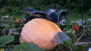Best Pumpkin Patch Minneapolis by Home