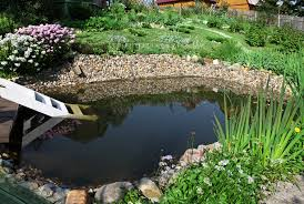 3 Easier Alternative To A Backyard Pond | McCarty Mulch Garnedgingsteishplantsforpond Outdoor Decor Backyard With A Large Fish Pond And Then Rock Backyard 8 Small Ideas Front Yard Ponds Backyards Wonderful How To Build For Koi Loving And Caring For Our Poofing The Pillows Project Photos Ideasnhchester Rockingham In Large Bed Scanners Patio Heater Flame Tube Beautiful Classical Design Garden Well Cared Indoor Waterfall Eadda Lawn Style Feat Artificial 18 Best Diy Designs 2017