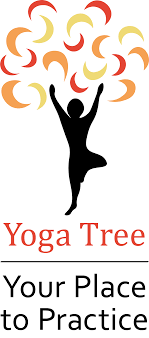 About Yoga Tree Indiana PA
