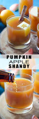 Kbc Pumpkin Ale Ingredients by 17 Best Images About Pumpkin Beers On Pinterest Cheddar Beer