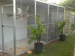 State Of The Art Flight Aviaries For Parrots And Exotic Birds ... Google Image Result For Httpaussiefinchbreedcomphotogallery Parrot Aviary Outdoor Sale Net Avaries Birds Button Quail Aviary A View From My Summerhouse Macaw And Pigeon Youtube Recent Backyard Chickens Amazoncom Omitree Large Pet Cage Cockatiel Conure The Rescue Report The Old Lady Pigeons Retirement Home Building A Flight Or Coz Amazing 26 Backyard Ideas On Rdcny Best Price On Hotel In Siem Reap Reviews