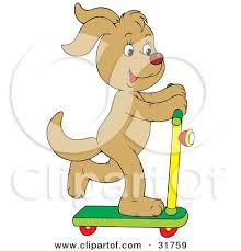 Tan Dog Having Fun While Riding On A Scooter By Alex Bannykh
