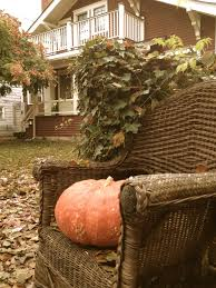 Backyard Pumpkin   Autumn In Oregon And Beyond!   Pinterest Pladelphia Garages Sheds Pavilions And More Backyard Beyond Photos Hummingbirds From Backyards Beyond Outdoors Landscaping Landscape Design Pinterest To The Baseline Medium Backyard Abhitrickscom Welcome Birding Sharing Original A Chestnut Hill Goes Infinity Boston Magazine In Marias Basement Backyards Modern Landscaping Designs Small Youtube 107 Inspiration For Fire Pit Round Fire Pit Paver