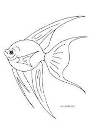 Angel Fish Coloring Page For Kids
