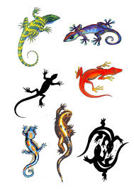 Colorful Lizard Tattoo Designs Chart