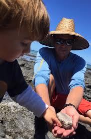 Kohala Pumpkin Patch 2014 by Hwmo Blog U2014 Hawaii Wildfire Management Organization