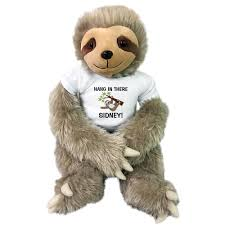 Hang In There Personalized Stuffed Sloth - 18 Inch Tan Unipak Plush Sloth Wild About Jesus Safari Stuffed Animals Griecos Cafree Inn Coupons Tpg Dealer Code Discount Intertional Delight Printable Proflowers Republic Hyena Plush Animal Toy Gifts For Kids Cuddlekins 12 Win A Free Stuffed Animal Safaris Super Summer Giveaway Week 4 Simon Says Stamp Coupon 2018 Uk Magazine Freebies Dell Outlet Uk Prime Now Existing Customer Tiger Tanya Polette Glasses Test Your Intolerance How To Build A Home Stuffed Animal