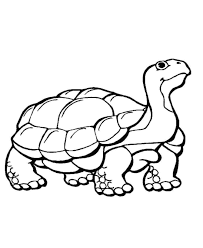 Learning Years Animal Coloring Pages