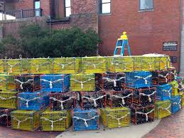 Crab Pot Christmas Trees by Rubber Duck Spends Ten Minutes On The Lobster Trap Christmas Tree
