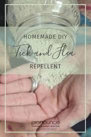 Homemade Flea Powder For Carpet by Diy Flea And Tick Repellent A Powder Recipe For Dogs Organic