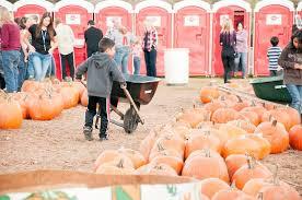 Atlanta Pumpkin Patch Corn Maze by Uncle Shuck U0027s Corn Maze U0026 Pumpkin Patch Dawsonville Ga
