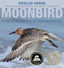 100 B95.com Moonbird A Year On The Wind With The Great Survivor B95