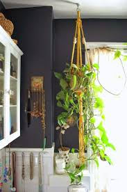 Best Plant For Dark Bathroom by 158 Best Boho Home Images On Pinterest Room Home And Plants