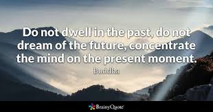 Do Not Dwell In The Past Dream Of Future Concentrate