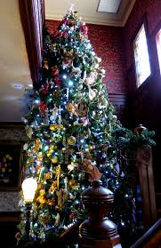 Prelit Christmas Tree That Puts Itself by Artificial Christmas Trees How Do You Measure 525600 Minutes