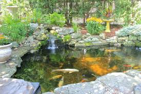 Backyard Pond Kits Home Depot Ponds Ideas Waterfall Designs ... Pond Kit Ebay Kits Koi Water Garden Aquascape Koolatron 270gallon 187147 Pool At Create The Backyard Home Decor And Design Ideas Landscaping And Outdoor Building Relaxing Waterfalls Garden Design Small Features Square Raised 15 X 055m Woodblocx Patio Pond Ideas Small Backyard Kits Marvellous Medium Diy To Breathtaking 57 Stunning With How To A Stream For An Waterfall Howtos Tips Use From Remnants Materials