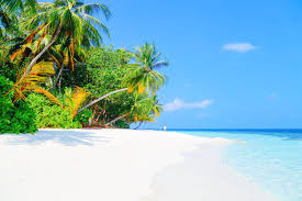 100 Maldives Beaches Photos 11 Countries With The Best In The World Hand Luggage Only