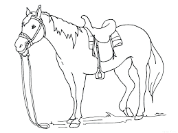 Printable Horse Jumping Coloring Pages To Color Page Horses Print Of Ho