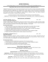 Marketing Executive Resume Samples Board Of Directors Example For