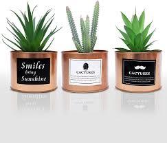 mini plastik sukkulenten künstlich künstliche kaktus