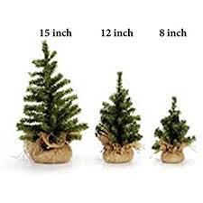 12 Ft Christmas Tree Canada by Amazon Com Darice Mini Christmas Tree With Burlap Base Canadian