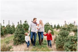 Tannenbaum Christmas Trees Janesville Wi by 28 Christmas Tree Farms Near Chicago Where To Cut Your Own