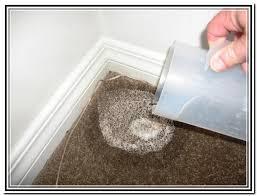 Dog Urine Odor Hardwood Floors by Cat Urine Wood Floor Hydrogen Peroxide Home Design Ideas