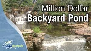 Million Dollar Backyard Pond - YouTube Build Your Own Backyard Pond Fish Farm Minnow Bait Trap Breeding Bestfishforaquaponic1 Aquaponics Greenhouse Pinterest Sustainable Farming How To Dig A Raise Backyard Aquaponic Fish Hatchery Youtube Stock Rainbow Trout In Back Yard Commercial Feed Wikipedia In Home Worldwide To Insteading For Food Or Profit At My Tank Small Scale Based Farms Aquaculture Equipment Landbased Project Ras Indoor