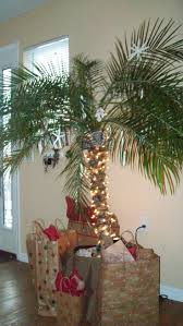 Seashell Christmas Tree by Top 25 Best Tropical Christmas Trees Ideas On Pinterest Beach