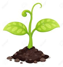 Seeds clipart pile soil 2