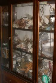Ebay Uk China Cabinets by Mic Uk Dr Clutter U0027s Cabinet Of Curiosities Part 1