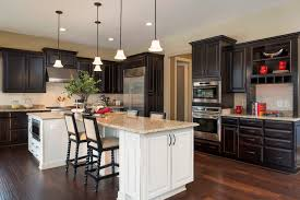 Kitchens With Dark Cabinets And Wood Floors by Dark Cabinets Houzz