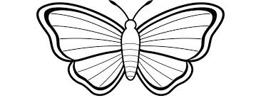 Monarch Butterfly Coloring Page Pages Butterflies Life Cycle Monarc