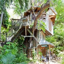 Experts Treehouses Inspire Others To Use Sustainability