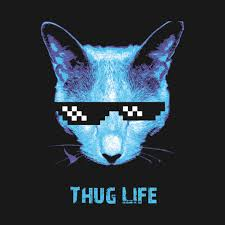 thug cat thug cat t shirt teepublic