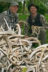 Deer Antler Shed Hunting by Shed Hunting Big Deer